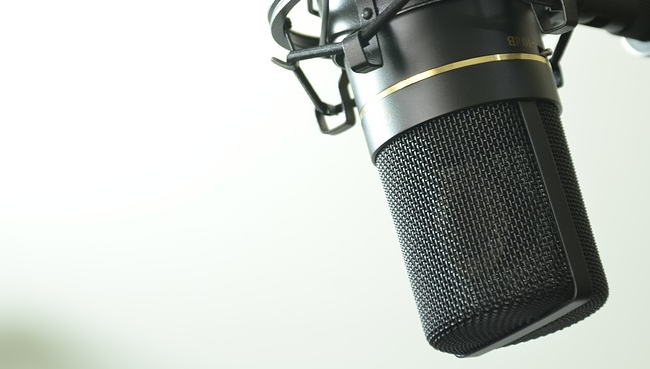 the different between dynamic microphones